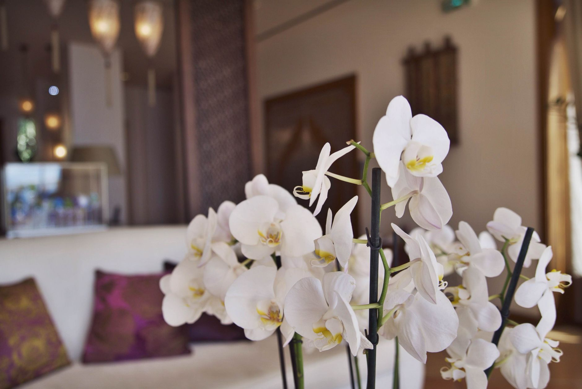 03-travel-lifestyle-hotel-tiara-yaktsa-cote-dazur-disi-couture