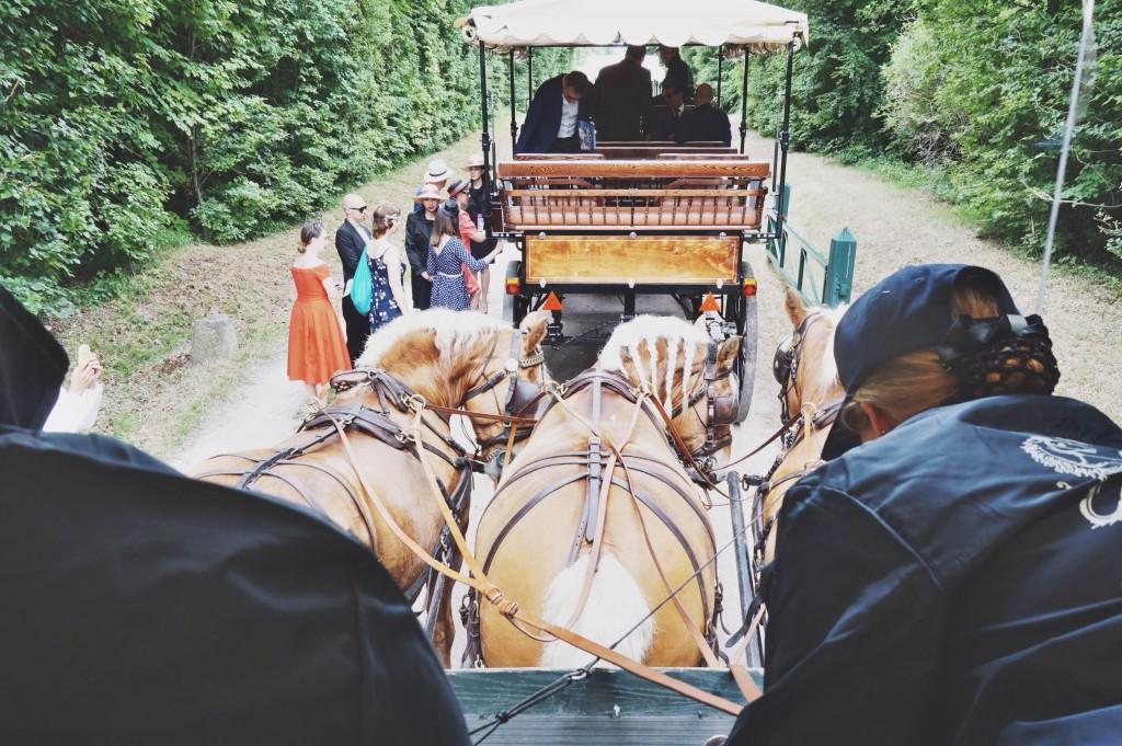 09-Prix-de-Diane-Longines-2015-Disi-Couture-France-Galop-Chantilly-Racecourse-Horse-Race