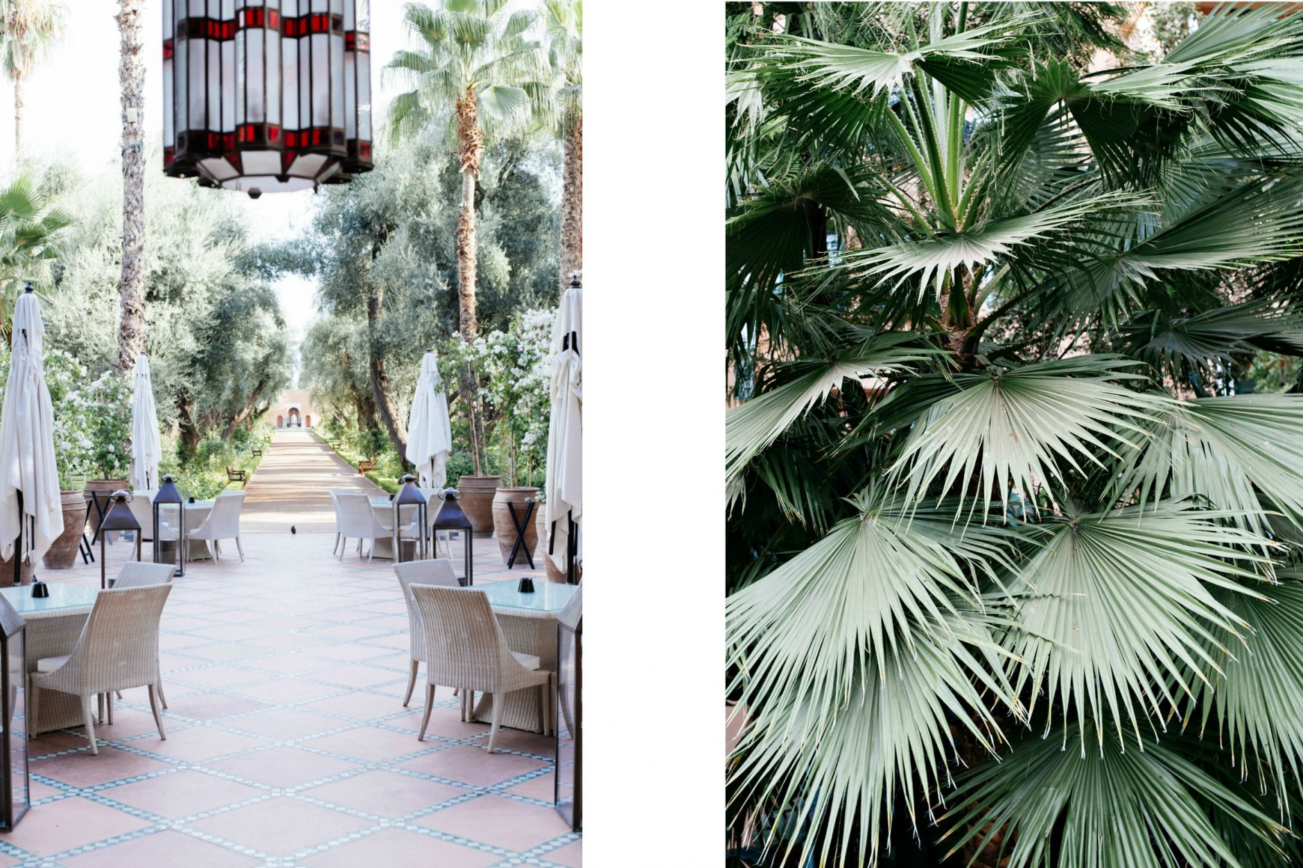 palace-in-marrakesh-morocco-la-mamounia-5-star-luxury-hotel-spa-17