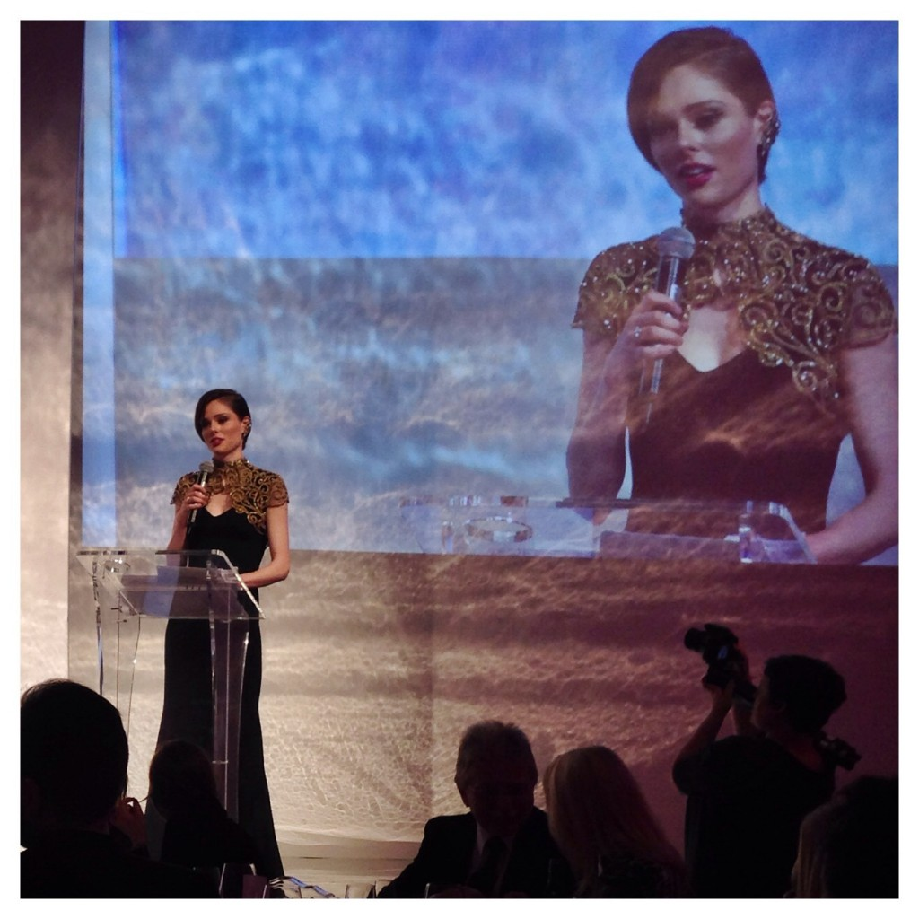 Vienna+Awards+2014+Gala+Dinner+Fashion+Lifestyle-09