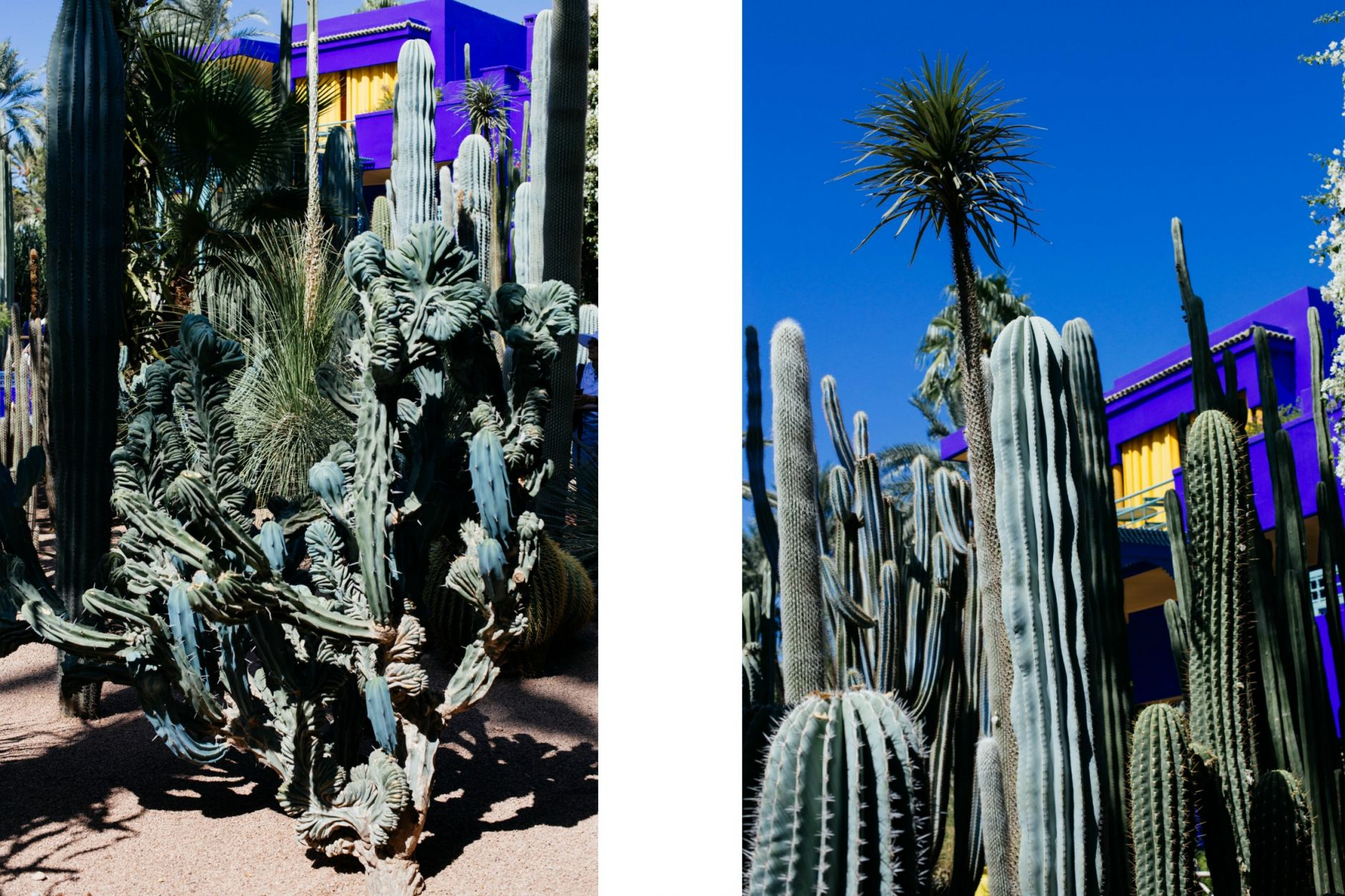 essential-tips-for-visiting-marrakech-morocco-disi-couture-02