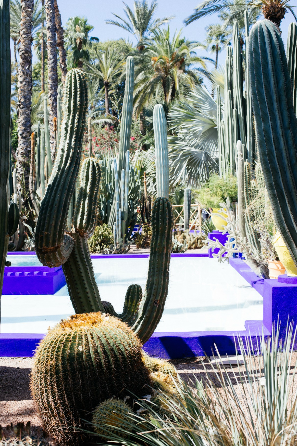 essential-tips-for-visiting-marrakech-morocco-disi-couture-10