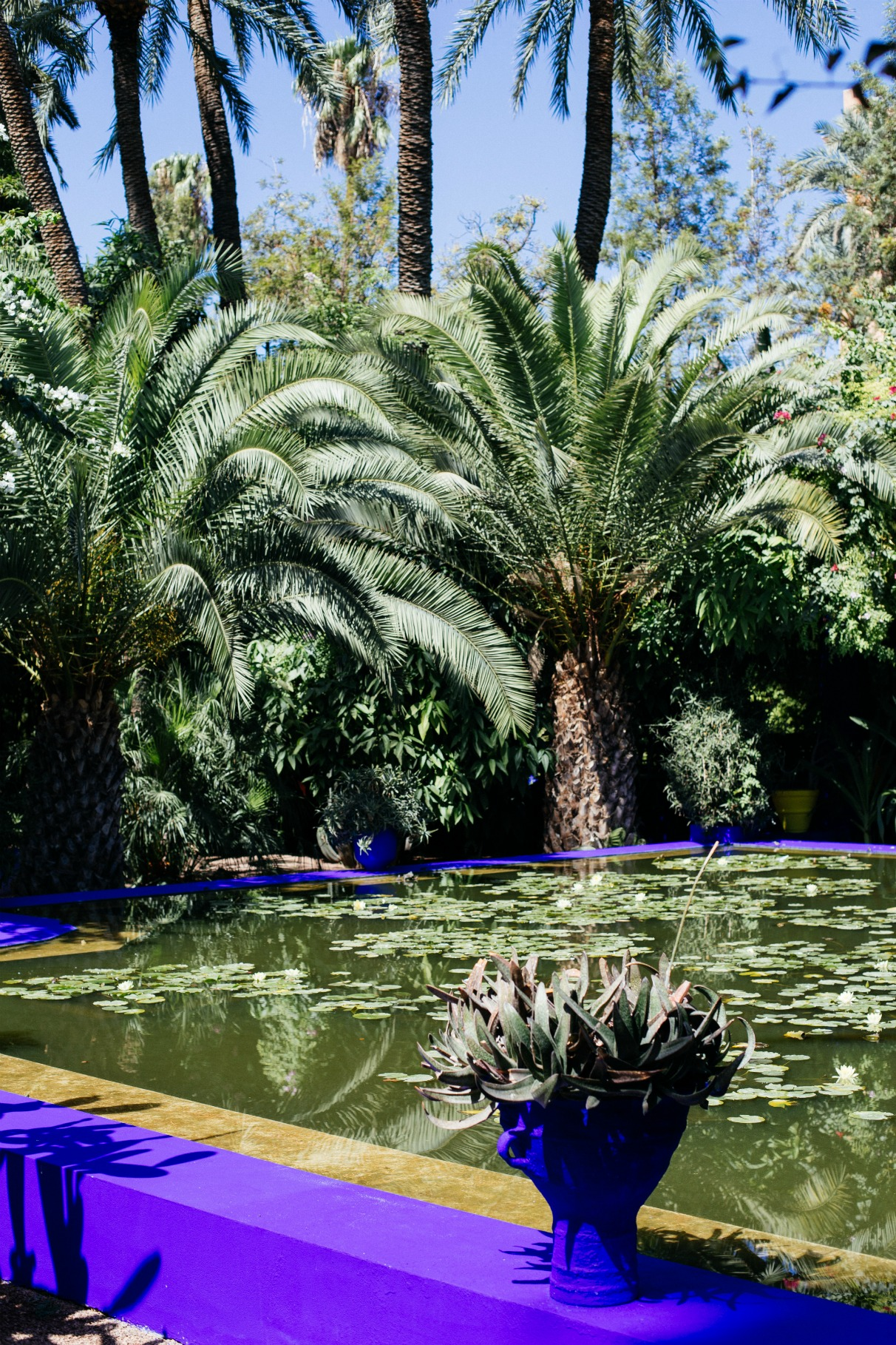 ONE WEEK IN MARRAKESH - DISI COUTUREDISI COUTURE